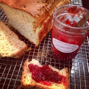gfJules gluten free sandwich bread